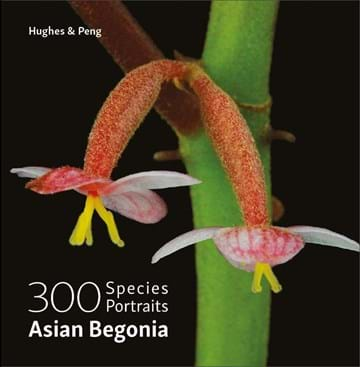 Asian Begonia book cover