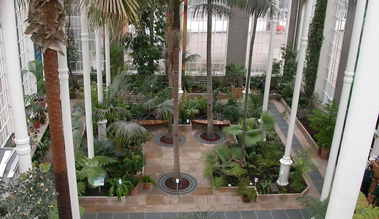 Temperate Palm House (inside)