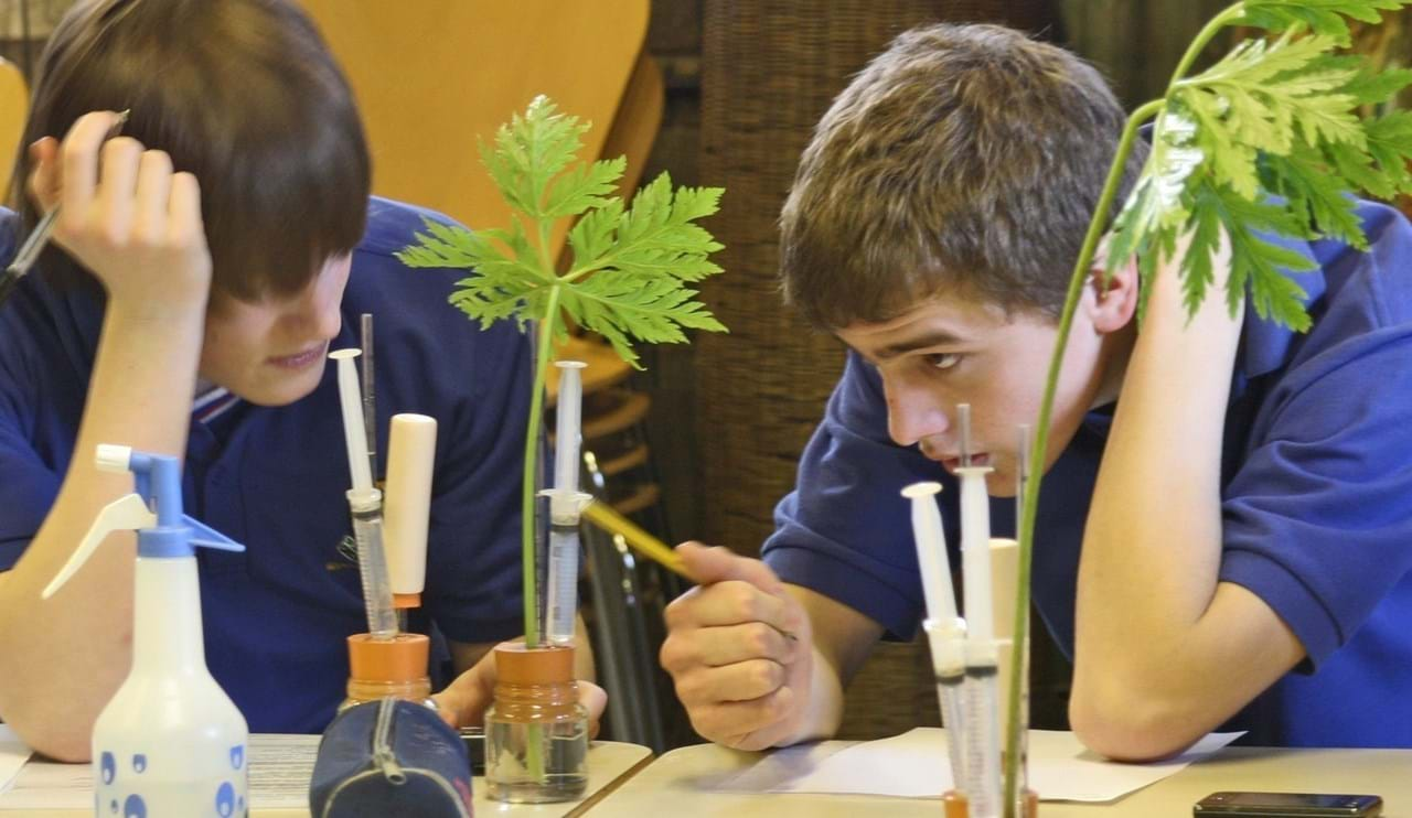 Young adults learning about plants in the classroom