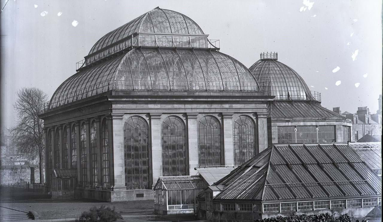 Temperate Palm House c. 1900