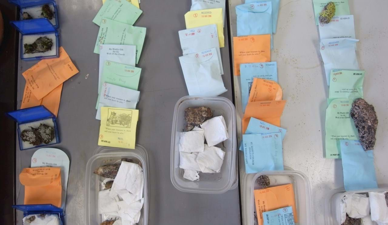 a collection of packets and samples from a lichen collecting expedition