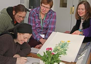 RBGE Diploma in Botanical Illustration