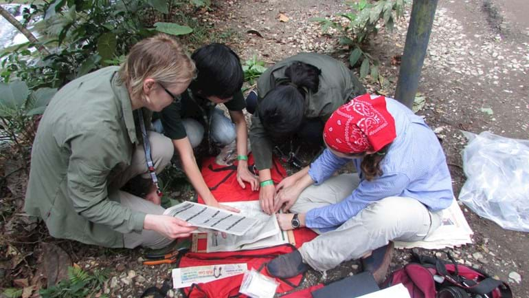 MSc students collecting Herbarium specimens in Colombia