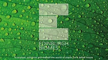 Biomes green logo