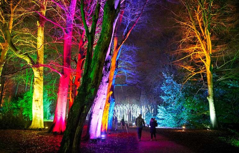 people walking past trees lit up in a variety of colours